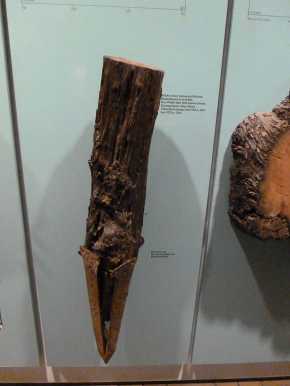 Pfahl Römerzeit gefunden Rheinbrücke 154 nach Chr.bis 303