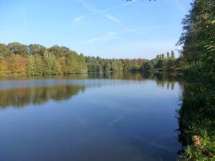 Der See Saaler Mühle