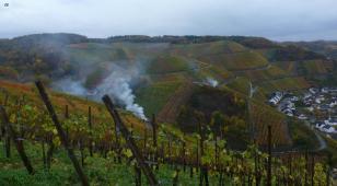 In den Weinbergen mit Laubverbrennung