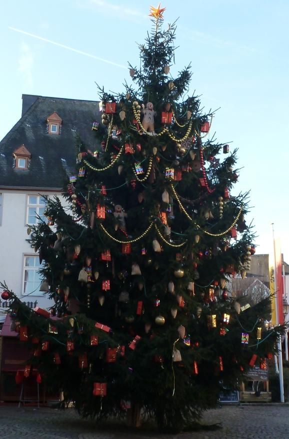 Tannenbaum in Ahrweiler