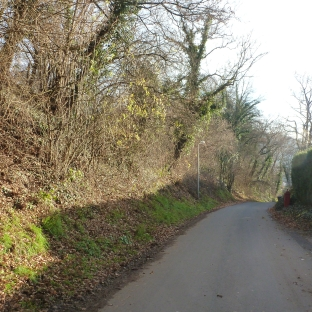 Waldweg zum Golfplatz