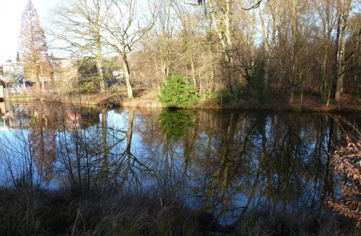 Der Zeltkirchensee