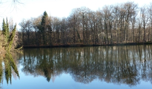 Frühlingswetter im Winter an der Saaler Mühle