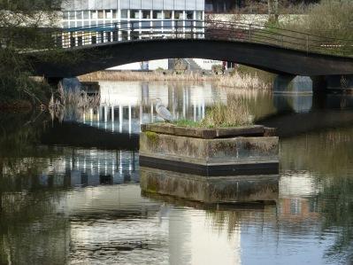 Teich mit Brücke im Park