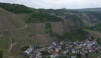 Blick auf Dernau und den Weinbergen