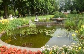 Der Seerosenteich im Kurpark