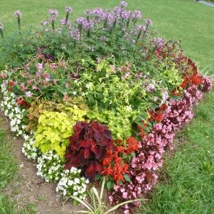 Buntes Blumenbeet an der Mosel