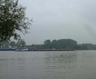 Der Rhein bei Köln -Porz an der Croov Freizeitanlage