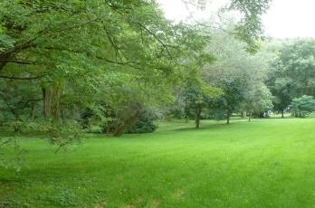 Die Kurparkwiesen