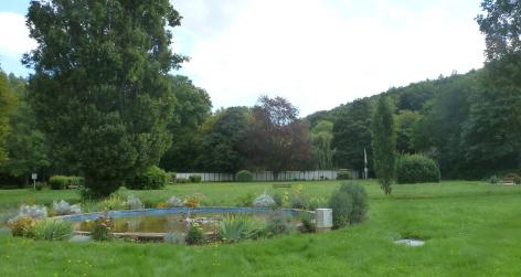 Wasserteich im Park