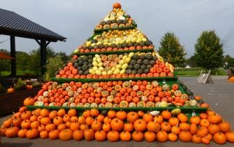 Kürbisse Pyramide wunderschön