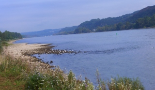 Rheinufer bei Bad Breisig