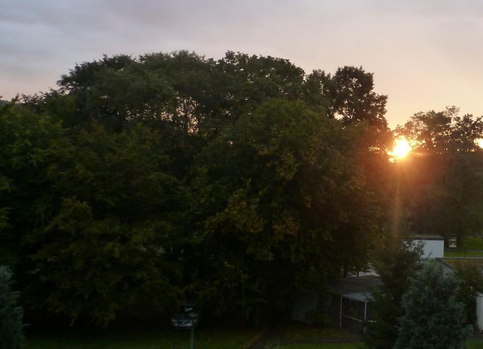 Sonnenuntergang an der Ahr