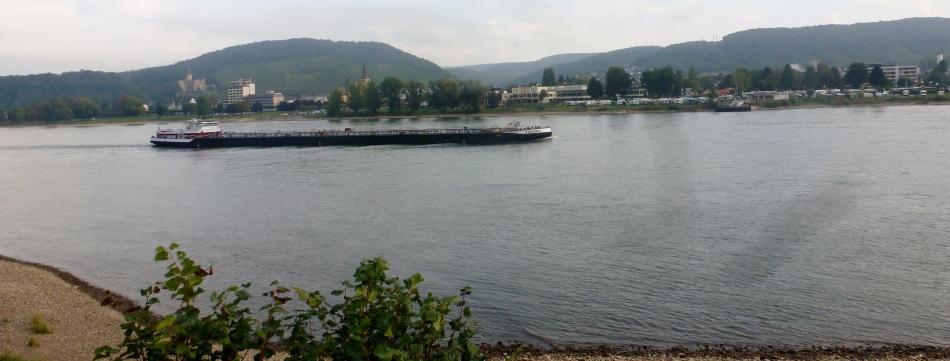 Rhein bei Bad Breisig mit Frachtschiff