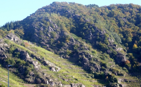 Die Weinberge im Felsgebirge