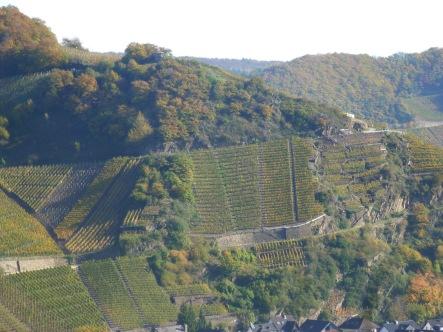 Die hochgelegenen Weinberge
