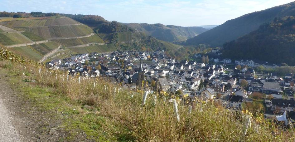Der Weinort in Dernau