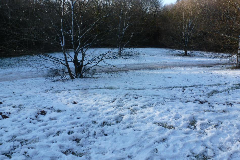 Der erste Schnee im Dezember 2014