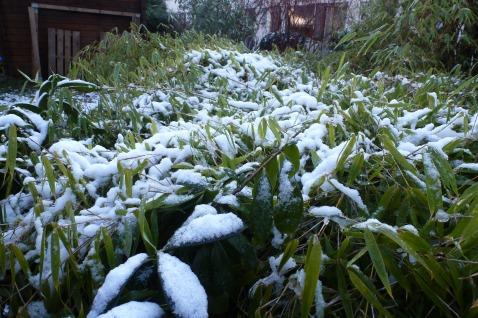 Nach dem Schneefall