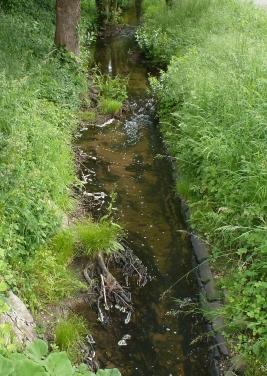 Ein kleiner Bach im Ort