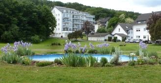 Springbrunnen im Kurpark in Bad Bodendorf