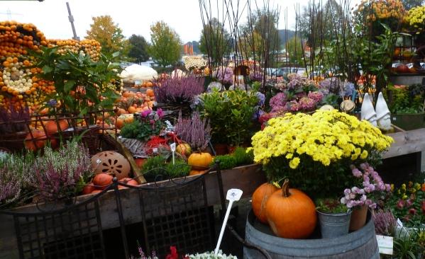 Blumenstand am Krewelerhof