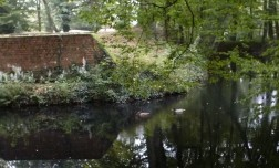 Der Burggraben mit der Ruine