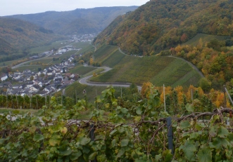 Weinberge mit Weindorf Dernau