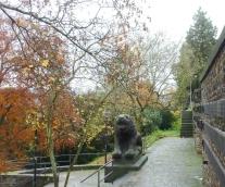 Der Löwe zum Park