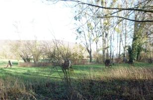 Bogenschieß Anlage im Winter