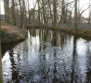 Wassergraben an der Motte
