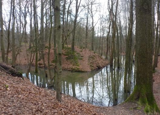 Nach dem vielen Regen ein Nebensee