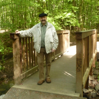 das bin Ich die Brücke zum Wald