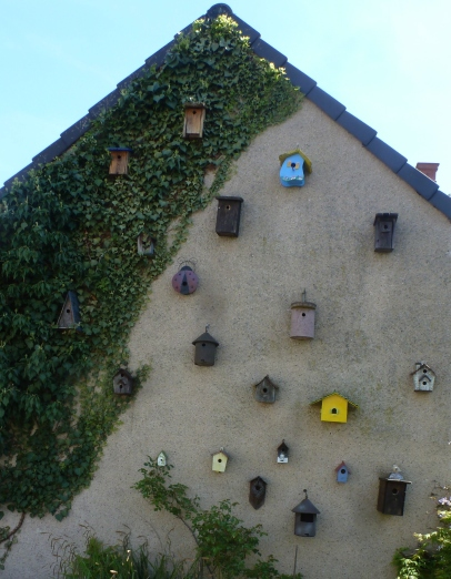 hier sind viele Wohnungen für unsere Vögel