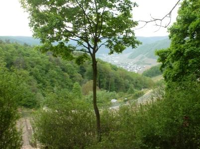 auf verschlungenen Weg Aussicht auf Dernau