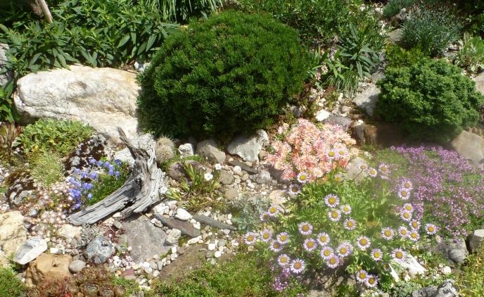 wunderschöner Steingarten