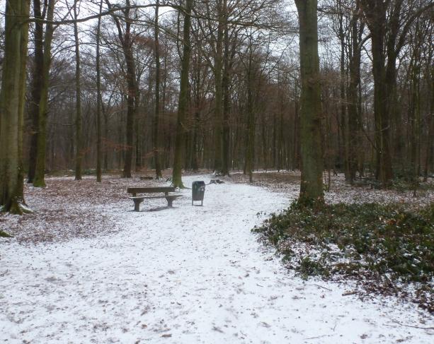 Der erste Schnee an der Saaler Mühle