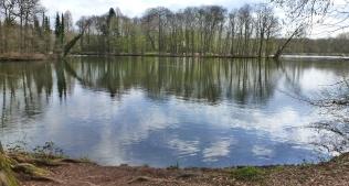 Der See am Saaler Mühlenwald